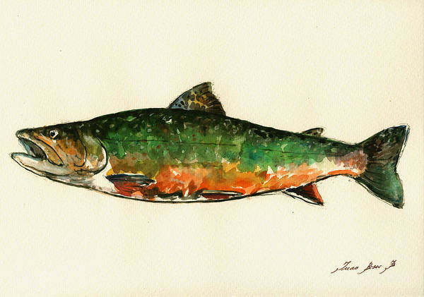 Brook Trout Poster featuring the painting Brook trout by Juan Bosco