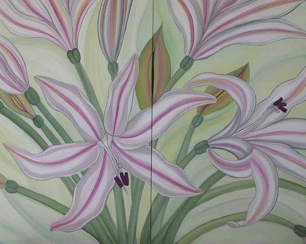Marinella Owens Poster featuring the painting Brunsvigia Grandiflora by Marinella Owens