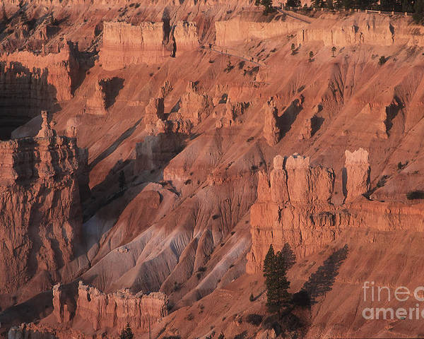 Utah Poster featuring the photograph Bryce Canyon At The Golden Hour by Stan and Anne Foster