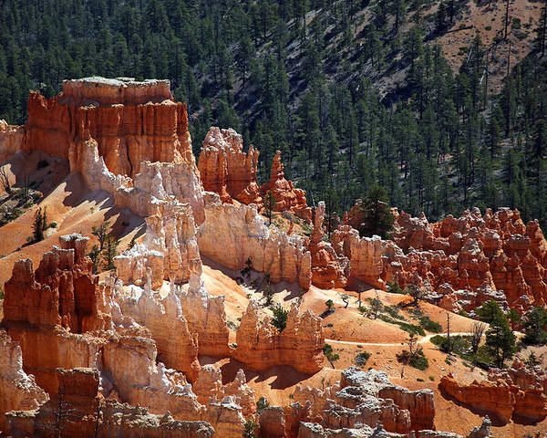 America Poster featuring the photograph Bryce Canyon by Jane Rix
