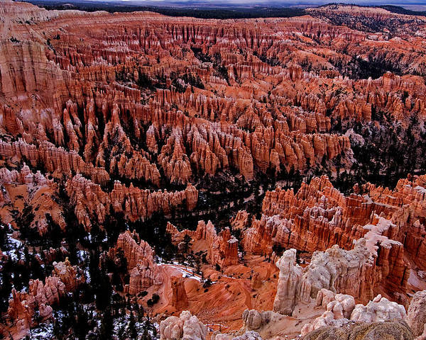 Landscape Poster featuring the photograph Bryce Canyon N. P. by Larry Gohl