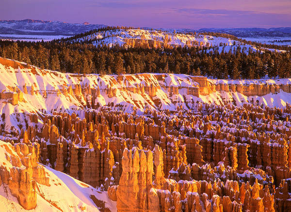 America Poster featuring the photograph Bryce Canyon Winter Sunrise by Johan Elzenga