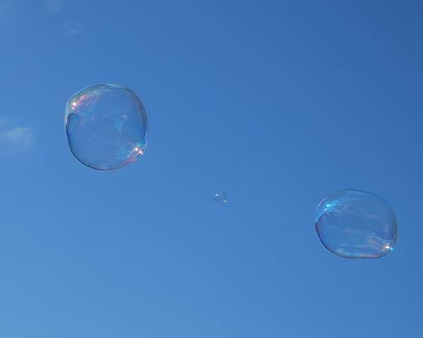 Bubbles Poster featuring the photograph Bubble Forms I by Marilynne Bull