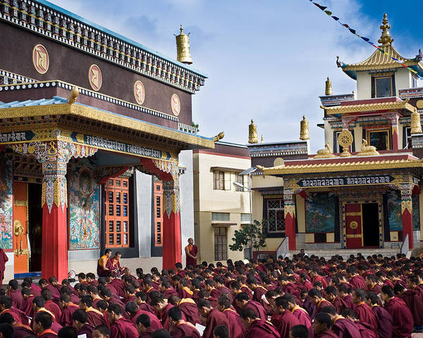 Buddhist Poster featuring the photograph Buddhist Monastery In Full Attendance by Nila Newsom