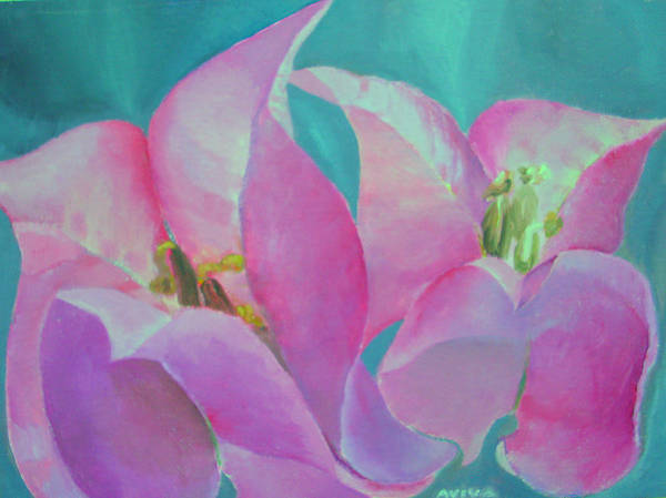 Bougainvillea Poster featuring the painting Bugenvila by Aviva D Sasson