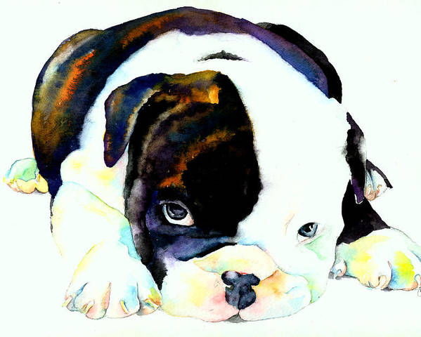 Puppy Poster featuring the painting Bulldog Puppy by Christy Freeman