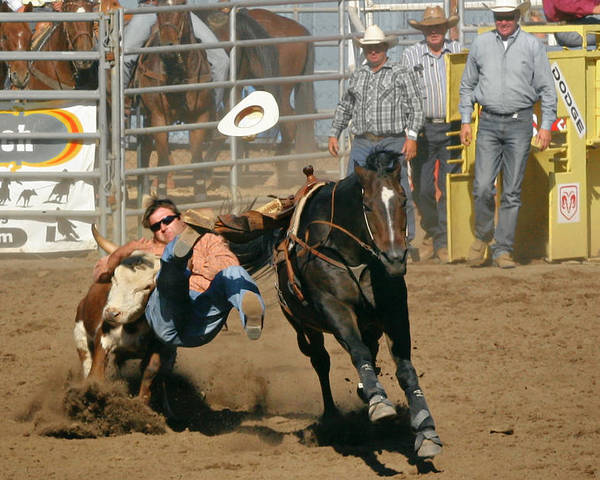 Cowboy Poster featuring the photograph Bulldogging At The Rodeo by Christine Till