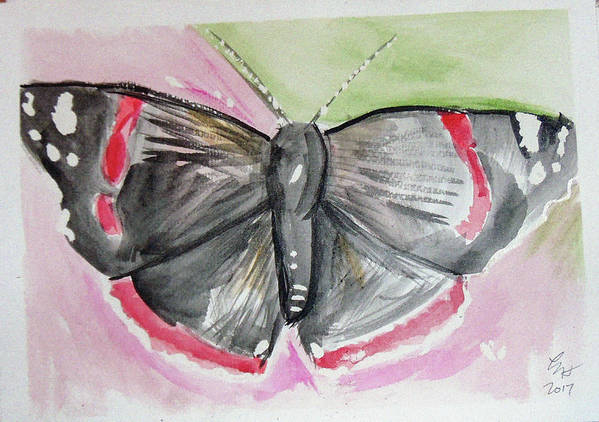 Poster featuring the drawing Butterfly by Loretta Nash