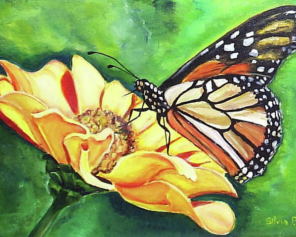 Daisy Poster featuring the painting Butterfly On Yellow Daisy by Silvia Philippsohn
