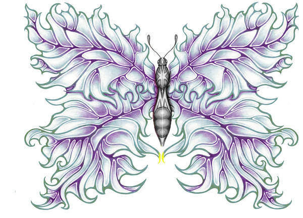 Drummer Poster featuring the drawing Butterfly Tattoo 2 by Karen Musick