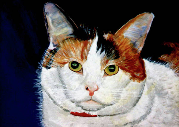 Cat Poster featuring the painting Buttons by Stan Hamilton