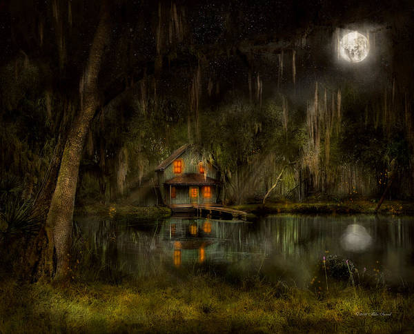 Swamp Poster featuring the photograph Cabin - De Land, Fl - Restless Night 1904 by Mike Savad