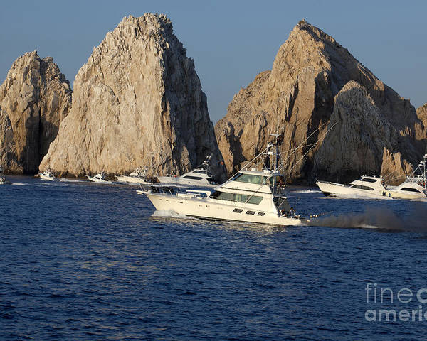 Fishing Poster featuring the photograph Cabo San Lucas - Sport Fishing by Anthony Totah