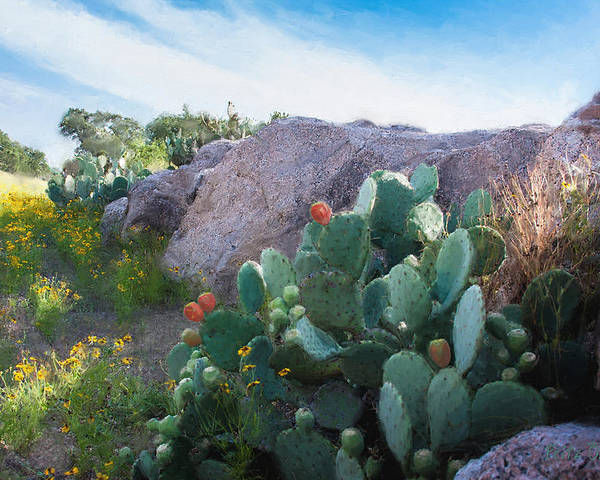 Cactus Poster featuring the painting Cactus And Granite  9234 by Fritz Ozuna