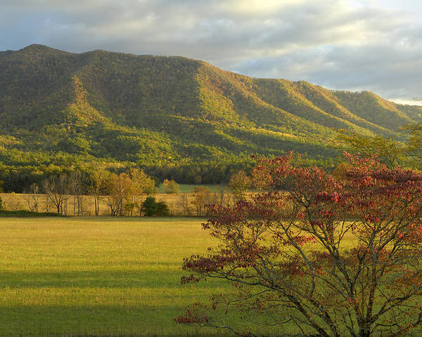Cades Cove Poster featuring the photograph Cades Cove Autumn Sunset In Great Smoky Mountains by Darrell Young