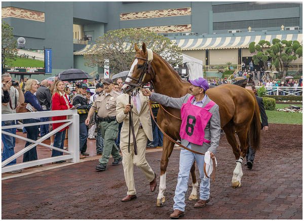 California Chrome Poster featuring the photograph California Chrome by Shukis Lockwood
