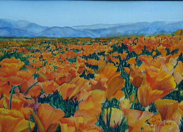 Scenery Poster featuring the painting California Poppies by Dwight Williams