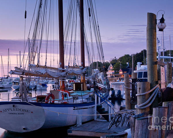 Bay Poster featuring the photograph Camden Windjammer Dawn by Susan Cole Kelly