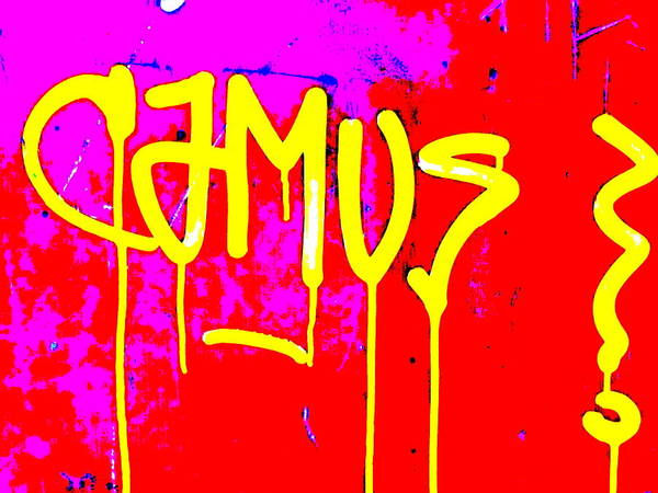 Graffiti Poster featuring the photograph Camus ... Graffitied by Funkpix Photo Hunter