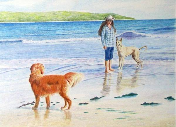 Golden Retriever Poster featuring the drawing Can I Play by Barbara Walker