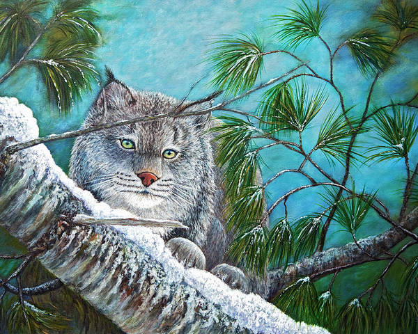 Canada Poster featuring the painting Canadian Lynx by Sandy Moser