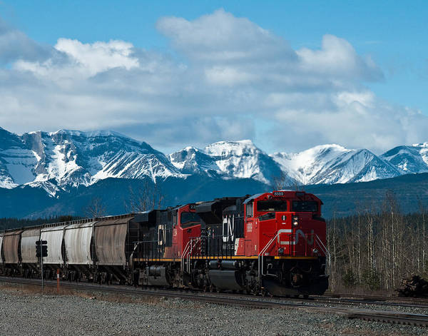 Alberta Poster featuring the photograph Canadian National Freight Train Leaving The Rockies - Hinton Alberta by R J Ruppenthal