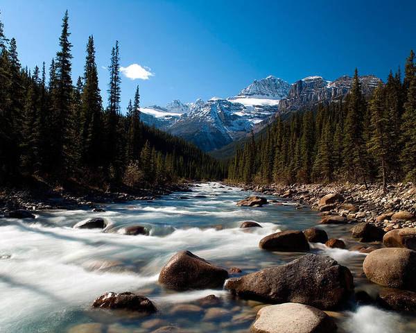 Stream Poster featuring the photograph Canadian Rockies - River Near Jasper by Richard Steinberger