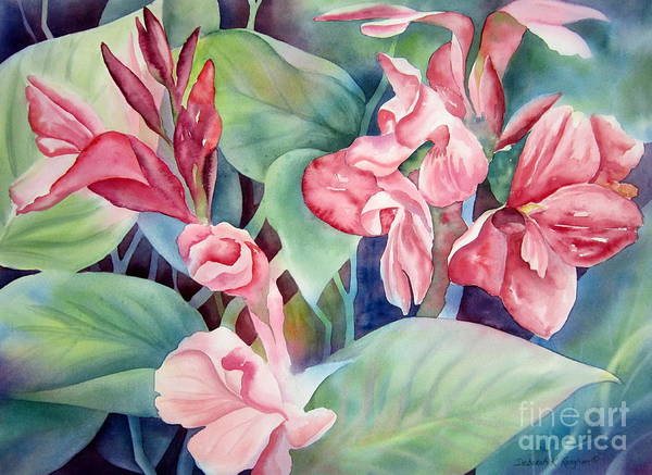 Canna Poster featuring the painting Canna by Deborah Ronglien