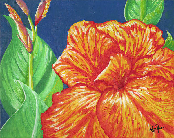 Canna Poster featuring the painting Canna Flower by Adam Johnson