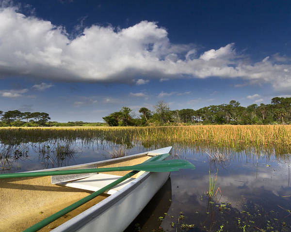 Boats Poster featuring the photograph Canoeing In The Everglades by Debra and Dave Vanderlaan