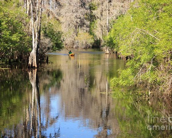 Canoeing Poster featuring the photograph Canoeing On The Hillsborough River by Carol Groenen