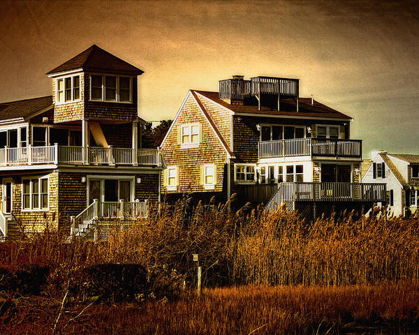 Cape Cod Poster featuring the photograph Cape Cod Gold by Gina Cormier