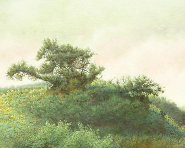Landscape Poster featuring the painting Cape Cod Scrub by Stephen Bluto