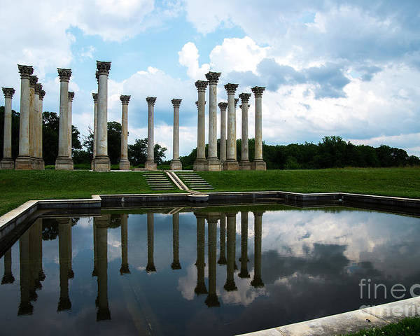 Capitol Columns Poster featuring the photograph Capitol Columns, National Arboretum by David Nicholson