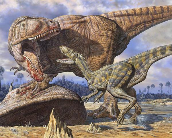 Carcharodontosaurus Poster featuring the photograph Carcharodontosaurus Guards Its Kill by Mark Hallett