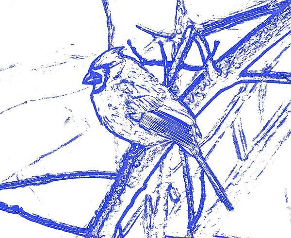 Cardinal Painted Poster featuring the photograph Cardinal Painted by Danielle Sigmon