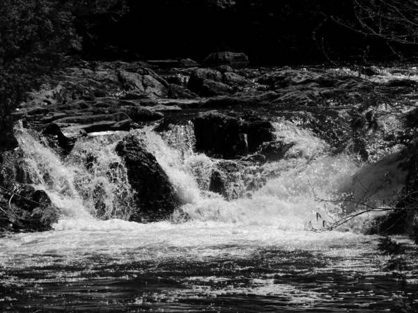 Black And White Poster featuring the photograph Cary Falls by William Tasker