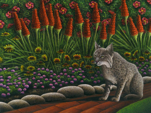 Bobcat Poster featuring the painting Cat - Bob The Bobcat by Carol Wilson