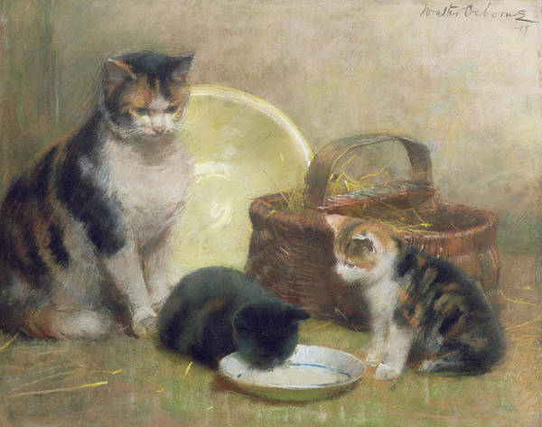 Cat And Kittens Poster featuring the painting Cat And Kittens by Walter Frederick Osborne