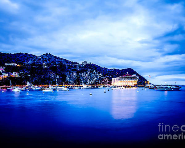 Catalina island avalon bay at night picture poster by paul for Catalina bay