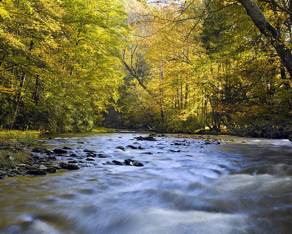 River Poster featuring the photograph Cataloochee Valley River by Richard Steinberger