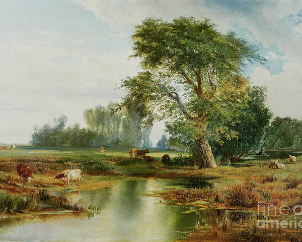 Cattle Watering Poster featuring the painting Cattle Watering by Thomas Moran