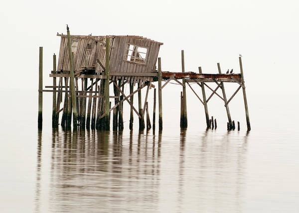 Wooden Poster featuring the photograph Cedar Key Structure by Patrick M Lynch
