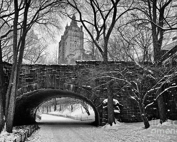 Cold Poster featuring the photograph Central Park And The San Remo Building by John Farnan