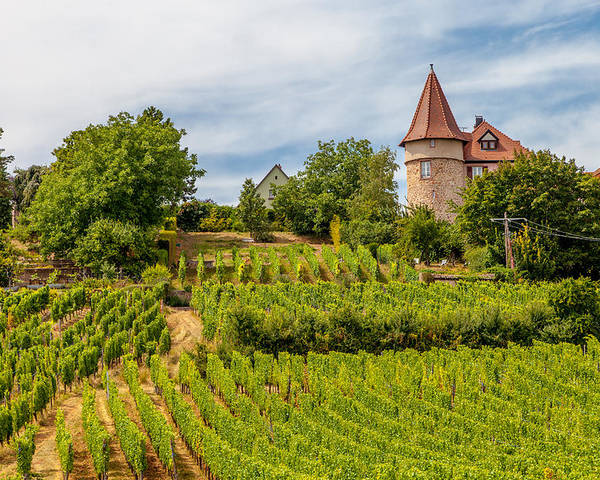 Chateau Poster featuring the photograph Chateau In A Vineyard by W Chris Fooshee