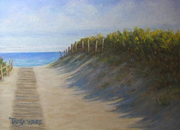 Landscape Poster featuring the painting Chatham Beachwalk by Tanja Ware