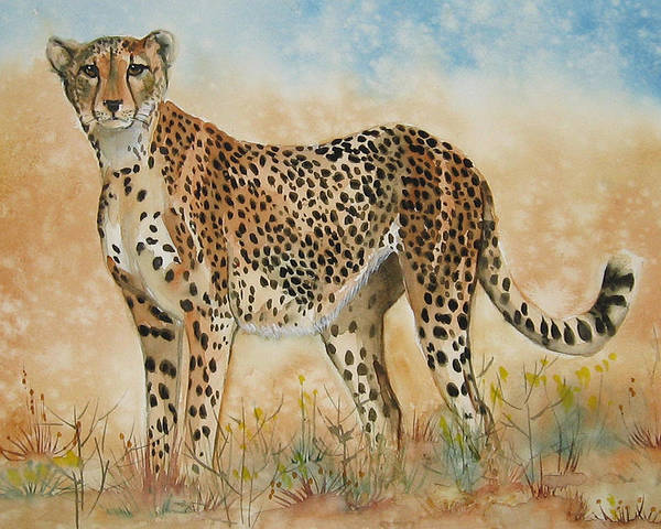 Cheetah Poster featuring the painting Cheetah by Gina Hall
