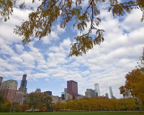 Fall Colors Poster featuring the photograph Chicago Skyline And Fall Colors by Sven Brogren