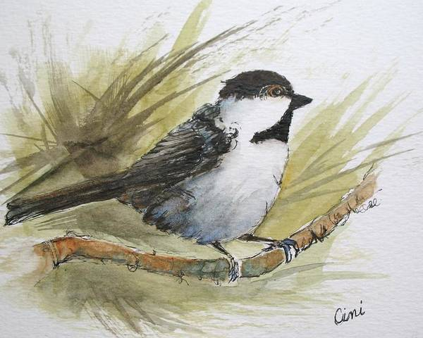 Bird Poster featuring the painting Chickadee by Lisa Cini