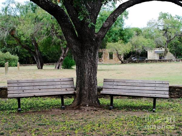 Bench Poster featuring the photograph Choose Your Bench by Gary Richards